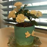 Permanent Link: Flowerpot Cake