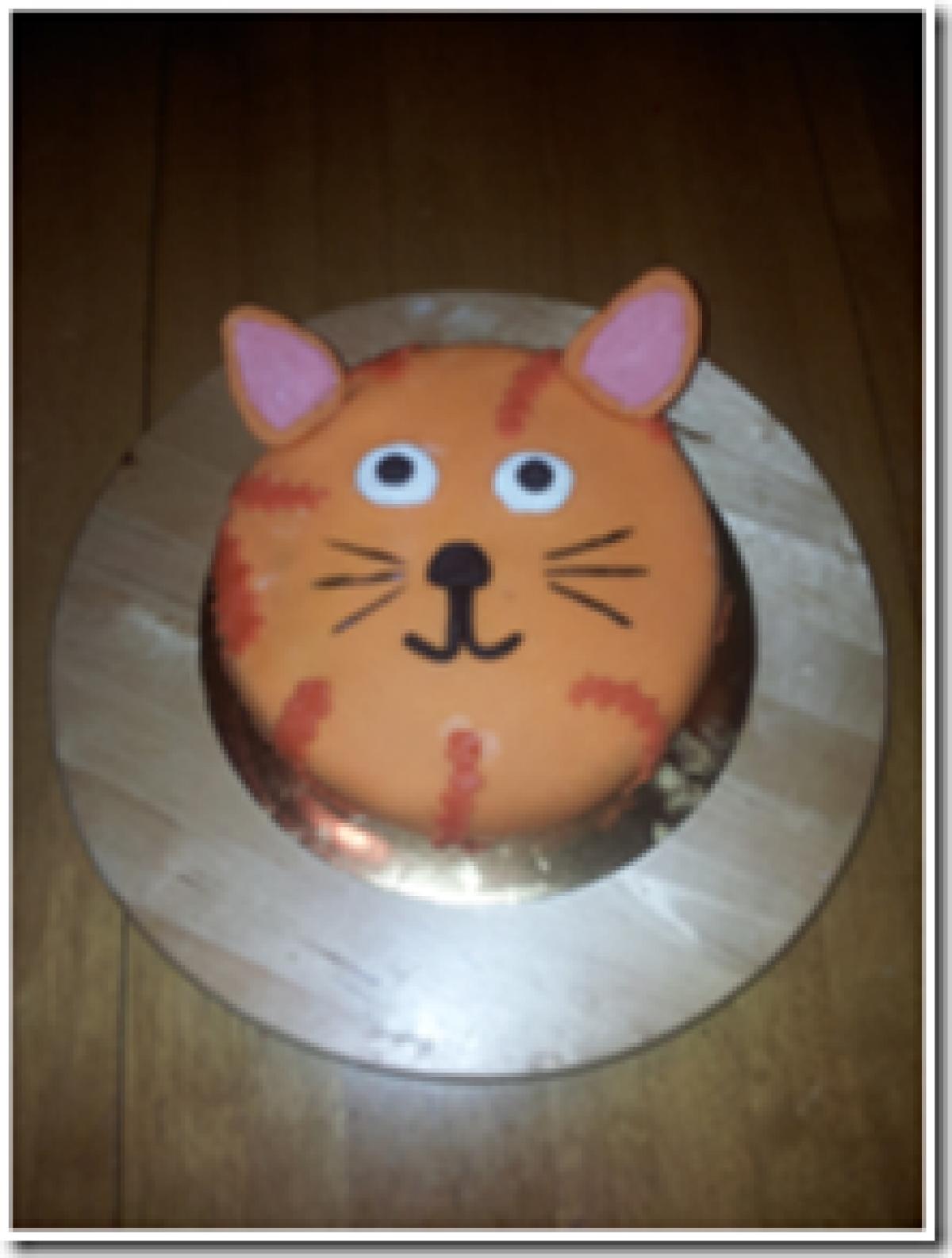 katt tårta recept