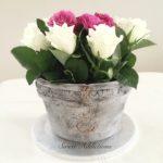Permanent Link: En kruka fylld med rosor