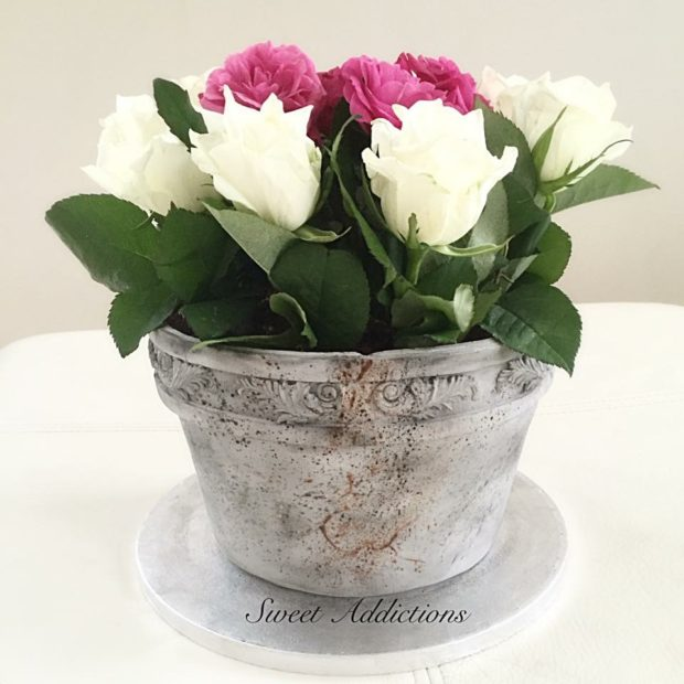 En kruka fylld med rosor